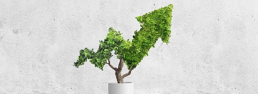 The rise of sustainable eCommerce