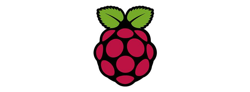 Will Raspberry Pi resolve the lack of IT Skills in the UK?